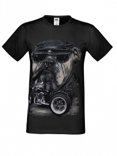 KOSZULKA T-SHIRT SURVIVOURS BULDOG MOTOR CYGARO FRUIT OF THE LOOM